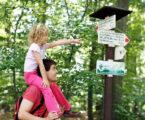 Szlaki turystyczne w Czechach – genialne, proste i przemyślane